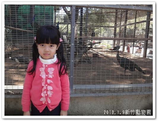 201001動物園03.jpg