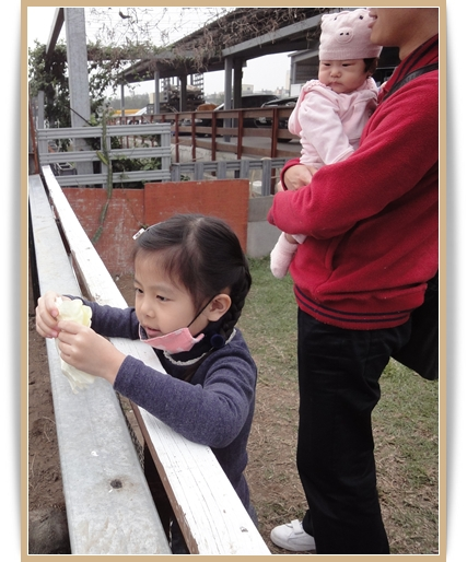 201103田園3.JPG