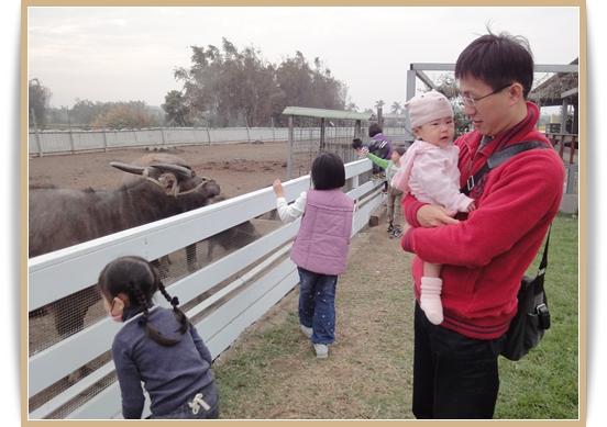 201103田園10.JPG