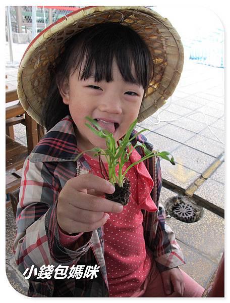 IMG_6076_副本.jpg