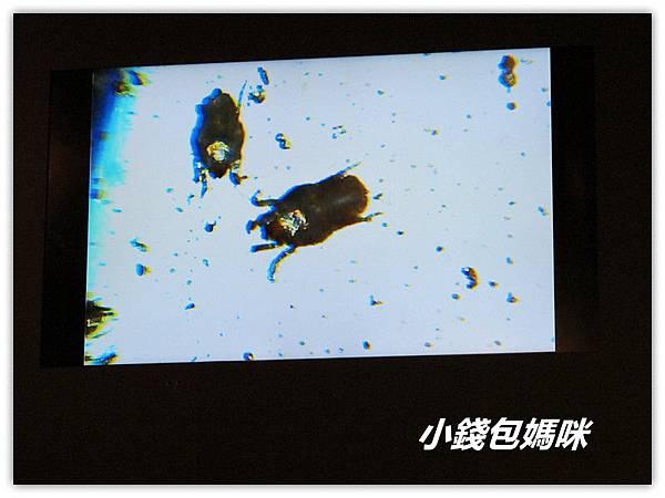 IMG_7196_副本.jpg