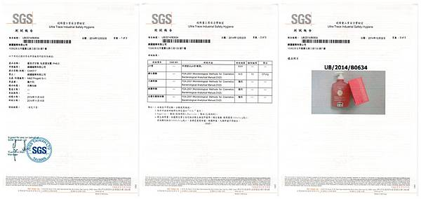 SGS_CAM-317_頁面_1_副本.jpg