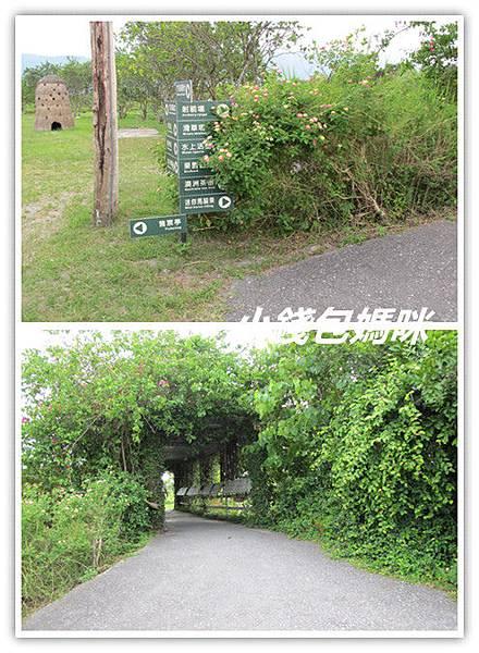 IMG_8464_副本.jpg