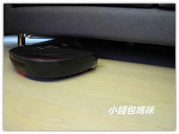 IMG_1146 (2)_副本.jpg