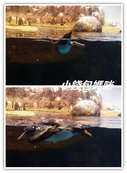 20151013_131809_副本.jpg