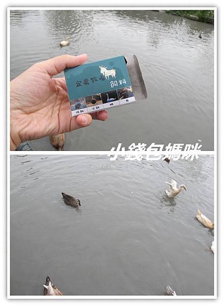 IMG_0220_副本.jpg