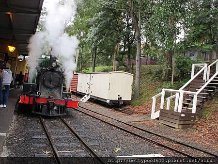 Puffing Billy百年蒸汽小火車