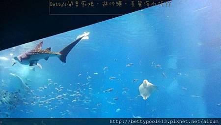 美麗海水族館