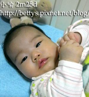 20090117-12.jpg