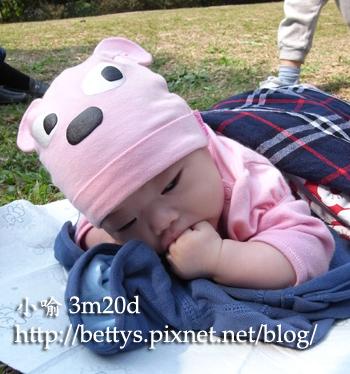 20090211-12.jpg