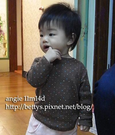 20091006-11.jpg