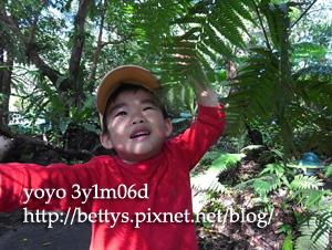 20091127-13.jpg