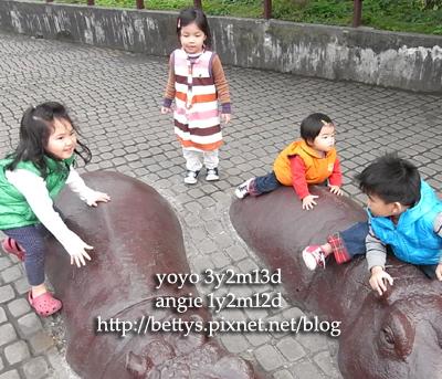 20100101-38.jpg