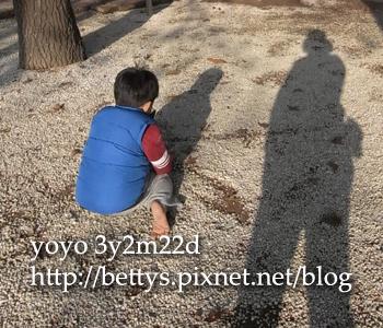 20100113.jpg