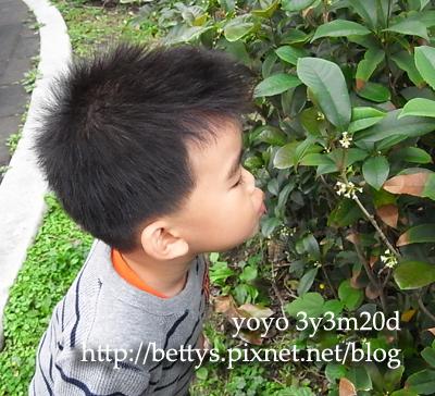 20100211-14.jpg