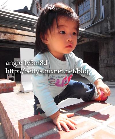 20100330-17.jpg