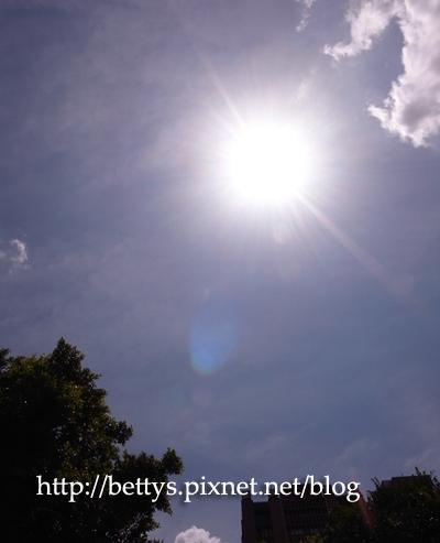 20100504-13.jpg