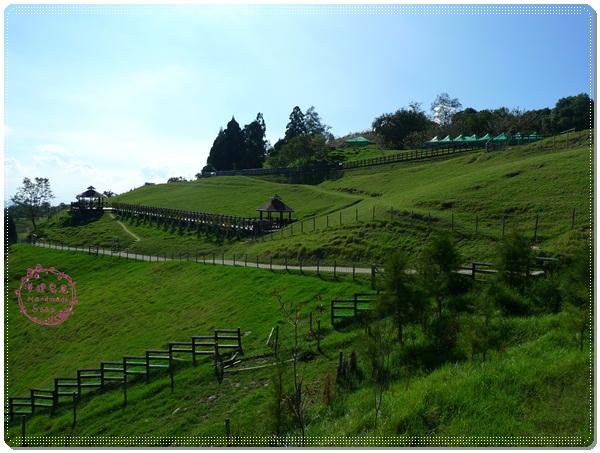 清境農場(14)