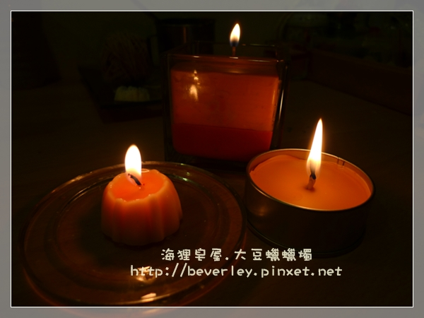 大豆蠟燭(6)