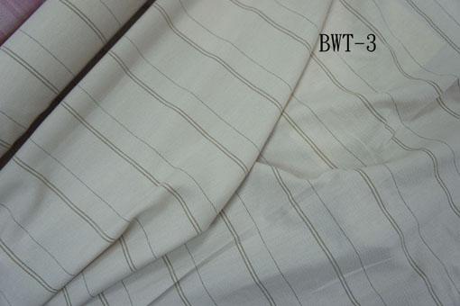 BWT-3-1.jpg