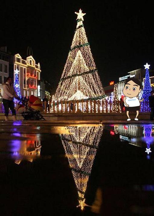 聖誕樹12.jpg