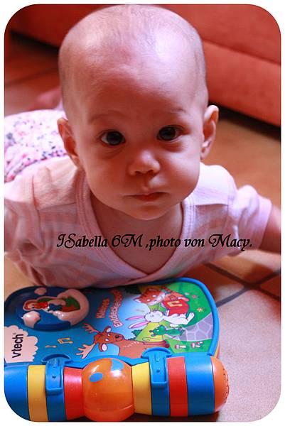 isabella 6M