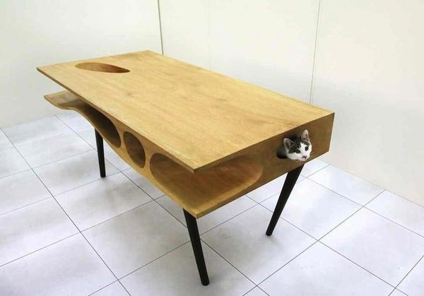 catable_2.jpg