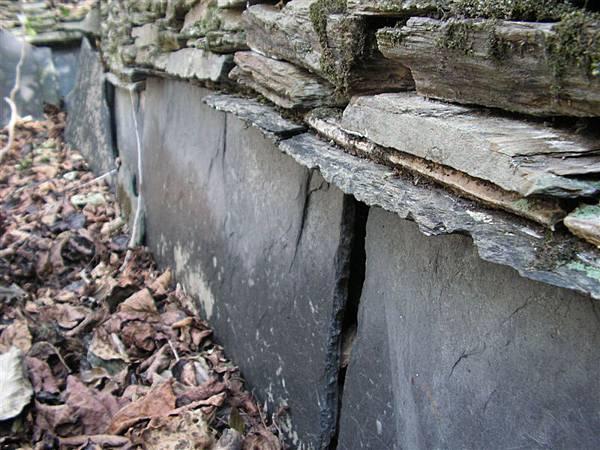 地質調查 585.jpg