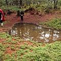 白松基點旁看天池