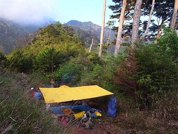 大鐵杉營地