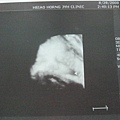 2008.8.28