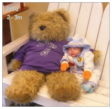 跟熊熊一起睡覺覺