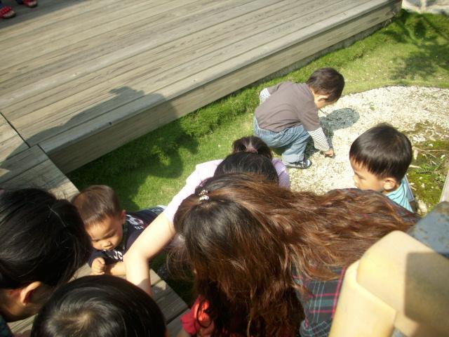 一群孩子在玩石頭