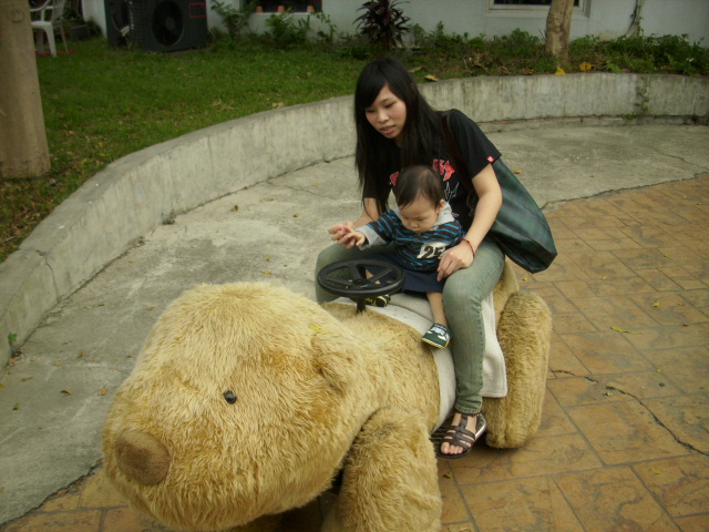 認真看著熊熊