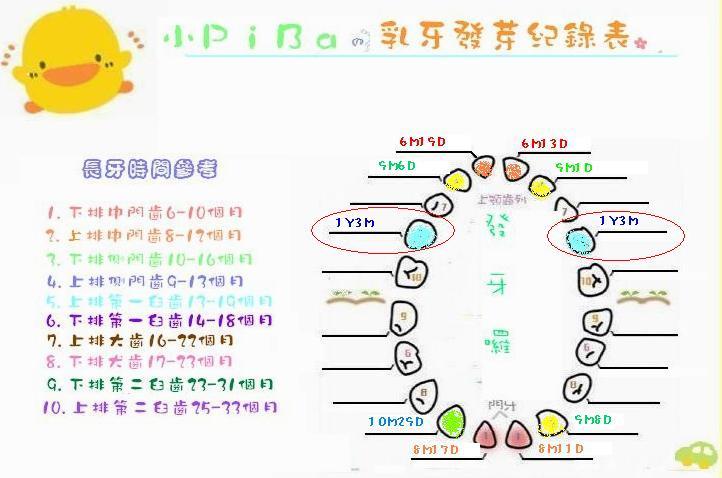 小P的乳牙紀錄(第九.十號小白).JPG