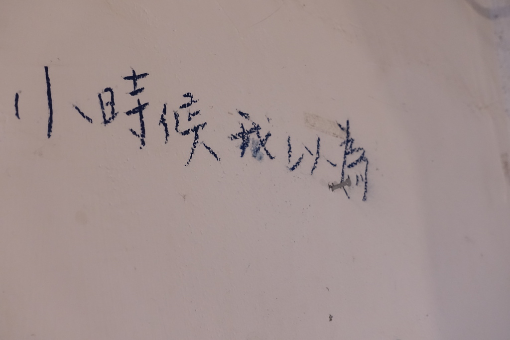 _DSC2041.JPG