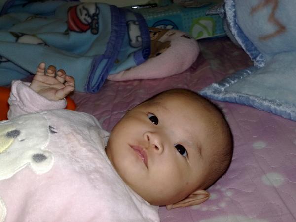20081212.jpg