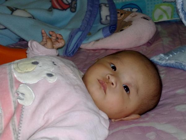 20081212001.jpg
