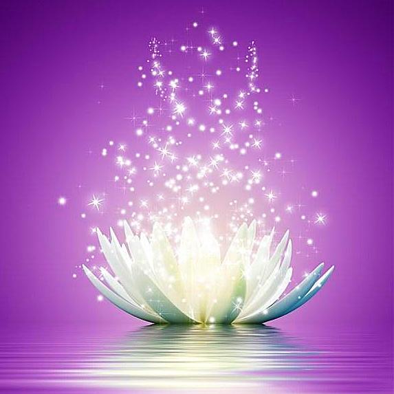 蓮花+光芒