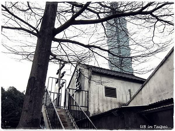 好丘-老樹101.JPG