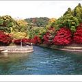 宇治--楓葉超紅.jpg