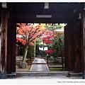 往東福寺路上的風景-1.JPG
