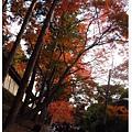 東福寺-前往通天橋-1.JPG