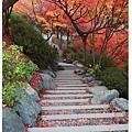 東福寺-通天橋下的石階-1.jpg