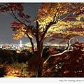 清水寺-京都夜景.jpg