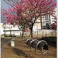 空堀-桃園公園