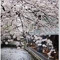 木屋町-三條高瀨川