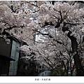 木屋町-高瀨川