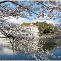 貴志川線-大池遊園民宿