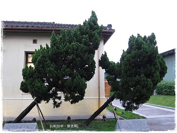 放送局-斜樹